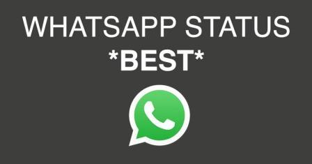 best whatsapp status quotes earningdiary